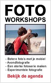 Fotoworkshops